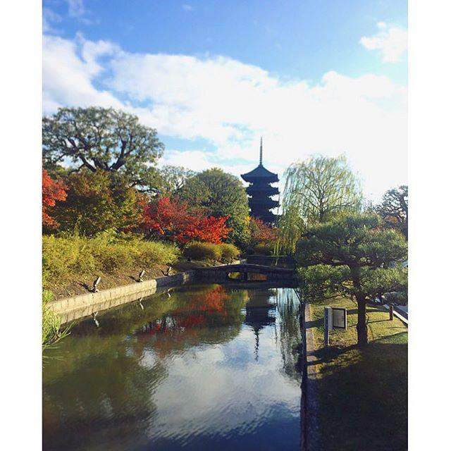 境界線久しぶりに東寺の弘法市に行きました。目ぼしいものは見つからなかったけれどあのわいわいした雰囲気で十分楽しめました♪秋は冬に背を押されながらそろそろ行ってしまいそうなので短い秋を楽しみたいものです。#五重塔#東寺#弘法市#京都#tojitemple#kyoto#一隅を照らす#照terasu @sa10ca.k http://terasu-seiho.com/#彫刻#sculpture#日本画#japanesepainting#截金#kirikane#cutgoldleafing#伝統#traditional#仏教美術#buddhistart#family#japan#japanesestories#art_we_inspire#芸術#美術